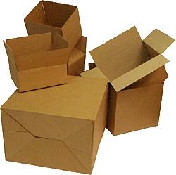 carton 1